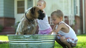 mplo-kids-with-dog